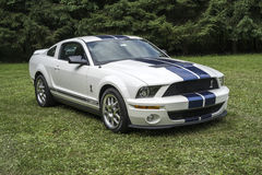 Shelby Stock Image