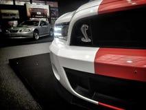 Shelby GT fotos de stock