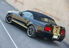 Shelby mustang Royalty Free Stock Photography