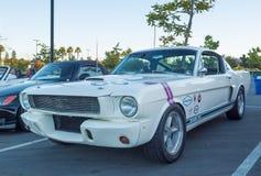 Shelby Mustang GT-350 fotografia de stock royalty free