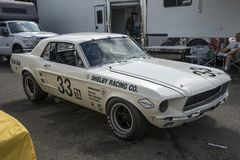 Shelby race car Royalty Free Stock Photography