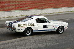 Shelby Racer Stock Image