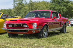 Shelby Royalty Free Stock Images