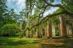 Sheldon Church Ruins. Yemassee, South Carolina stock image
