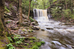 Sheldon Reynolds Falls, Ricketts Glen State Park Royalty Free Stock Images