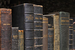 Shelf of Bibles stock images