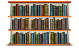 Shelf with books and frame. Wooden bookshelf with vintage old books and frame,  illustration Royalty Free Stock Image