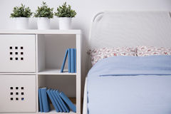Shelf with books Stock Photo
