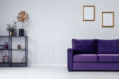 Shelf and couch. Metal shelf with golden leaf and velvet couch in a living room interior Royalty Free Stock Image
