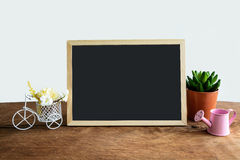Shelf decoration with frame and flower on white Stock Photography