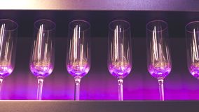 Shelf with a lot of empty wine glasses with pink and violet light. Bar or glassware shop interior. Celebration, event or. Party concept royalty free stock image