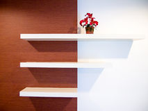 Shelf on wall. Three shelves on the white and brown color wall Stock Images