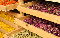 Shelfs with dried flowers Stock Photography