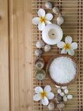 Shell, óleos da massagem e flores do tiare Fotografia de Stock Royalty Free