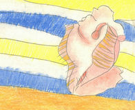 Shell στο κάλυμμα στην παραλία Στοκ εικόνες με δικαίωμα ελεύθερης χρήσης