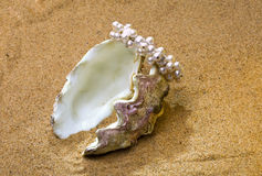 The shell. With a pearl beads lies on sand Stock Photo