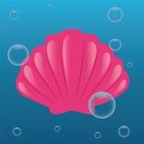 Shell Foto de Stock