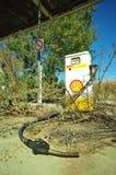 Shell Fotografering för Bildbyråer