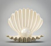Shell ilustração royalty free