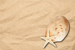 Shell Imagen de archivo