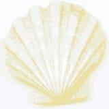 Shell achtergrond (vector) Royalty-vrije Stock Afbeeldingen