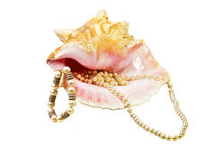Shell And Jewelry Stock Image