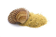 Free Shell And Sand Isolated On White Stock Image - 16079451