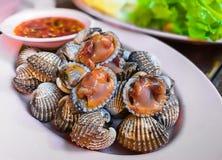 Shell animal, coquillage, crustacé, fruits de mer, caviar image libre de droits