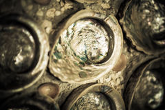 Free Shell Art Royalty Free Stock Image - 26028776