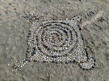 Shell art Stock Images
