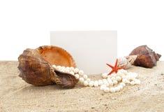 Shell auf Sand und einem Stück eines Papiers für eine Anmerkung Stockfotos