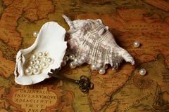 Shell avec des perles photo stock