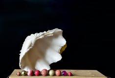 Shell avec des perles de couleur sur le noir Photos stock