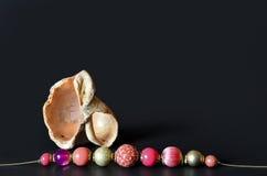Shell avec des perles de couleur sur le noir Images stock