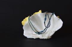 Shell avec les perles bleues sur le noir Photos stock