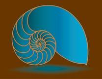 Shell azul del nautilus Imagen de archivo libre de regalías
