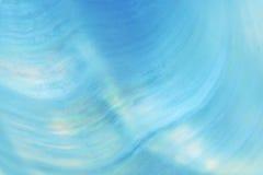 Shell Background Fotografia Stock Libera da Diritti