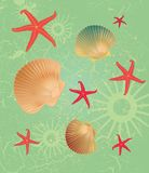 Shell background stock illustration