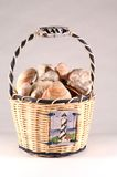 Shell Basket Royalty Free Stock Images