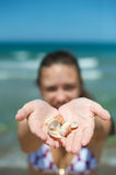 Shell and beach Royalty Free Stock Photography