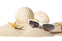 Shell on beach. Shell and sunglasses on beach, isolated on a white background,with a lot of copy-space Stock Photos