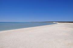 Shell Beach, baía do tubarão, Austrália Ocidental Fotografia de Stock Royalty Free