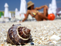 Shell on beach vacation girl background Stock Photography