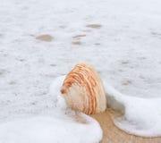 Shell on the beach. Sea shell on the beach Stock Photos