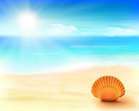 Shell on the beach. Vector Illustration. Royalty Free Stock Photography