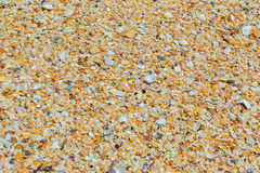 Shell beaches on the Black Sea coast. Royalty Free Stock Photo