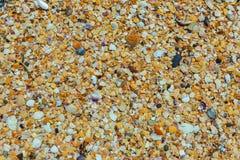 Shell beaches on the Black Sea coast. Stock Photo