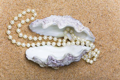 Shell with a  beads. The shell with a pearl beads lies on sand Royalty Free Stock Photography