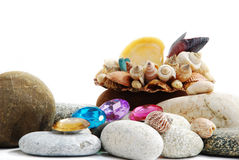 Shell & beads Royalty Free Stock Image