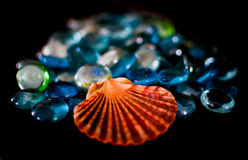 Shell and Beads Stock Photo